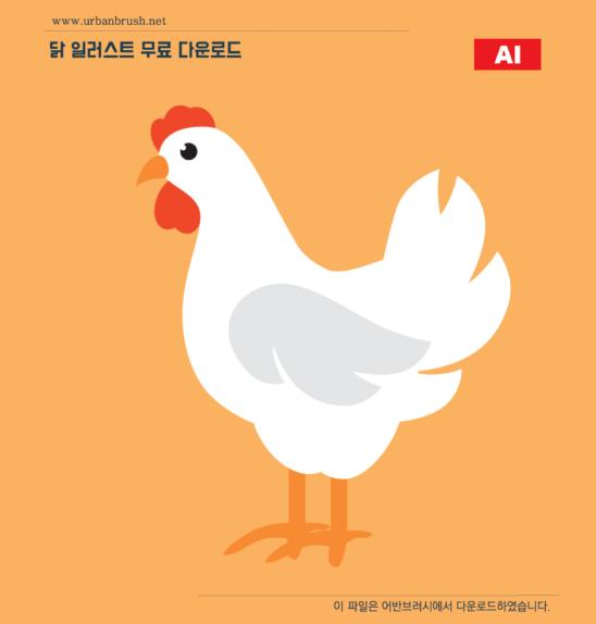 닭 일러스트 Ai 무료다운로드 Chicken Illustration Urbanbrush