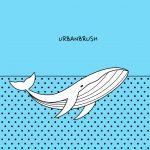 고래 팝아트 일러스트 ai 무료다운로드 free Whale Pop Art vector